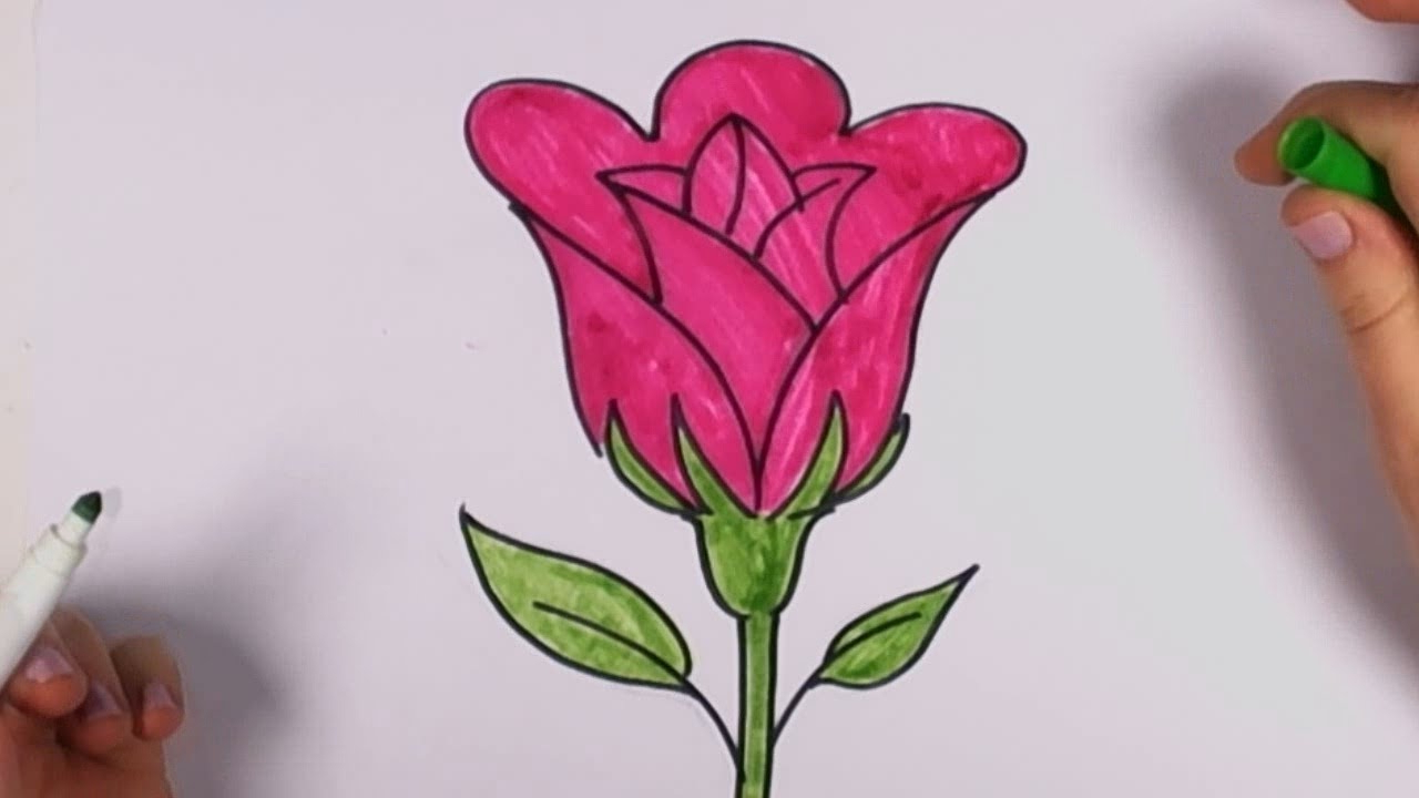 Beautiful flowers drawing step by step at getdrawings free for 1280x720 drawings of beautiful flowers in a garden easy drawing easy izmirmasajfo