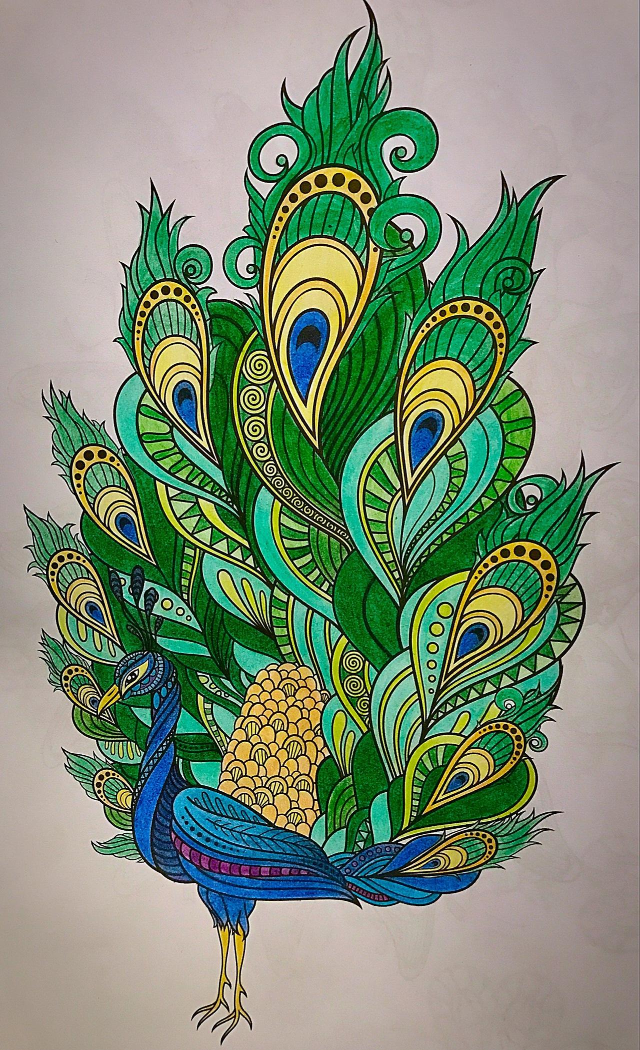 1280x2098 Beautiful Peacock Painting Bird, Drawing, Art, Animal