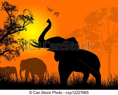 450x362 Wild Elephants