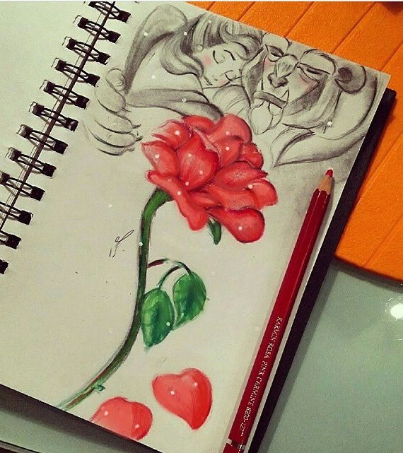 570x641 Beauty And The Beast Rose Art In A Notebook