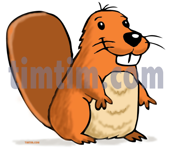571x491 Free Drawing Of A Beaver From The Category Wild Animals