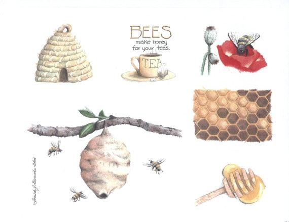 570x439 Bees Beehive Honey Honey Dipper Poppy With Bee Bee Skep