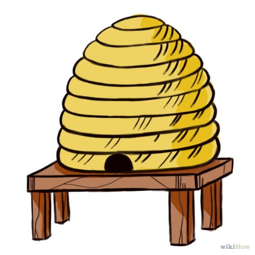 500x500 How To Draw A Beehive 7 Steps (With Pictures)