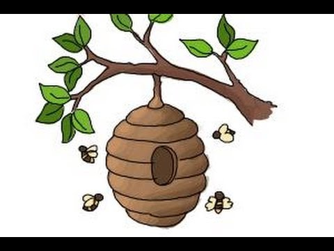 480x360 How To Draw A Beehive