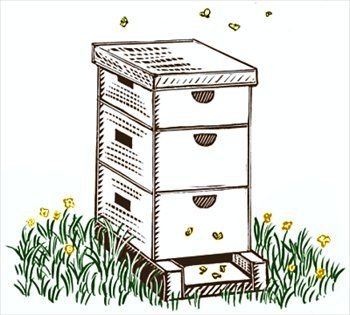 350x315 Free Black And White Clipart Of Bee Hives