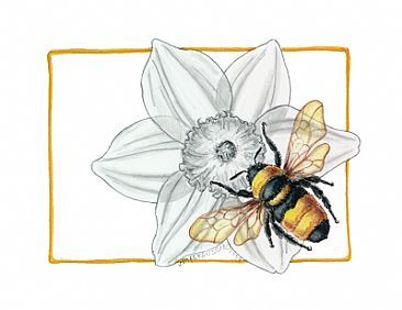 366x282 How To Draw Honey Bee On Flower