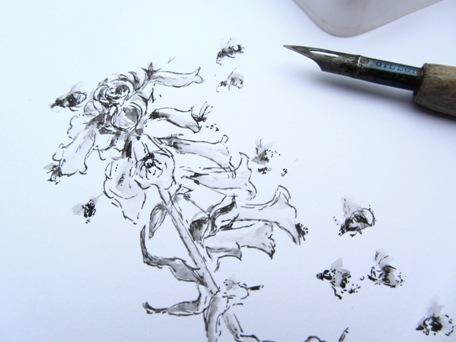 456x342 Latest Bee Drawings Christine Farmer