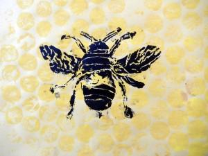 300x225 Scientific Drawings Bee Prints