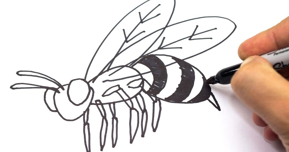 1000x527 Coloring Pages Christmas Beautiful Bee Page Best Of Bumblebee