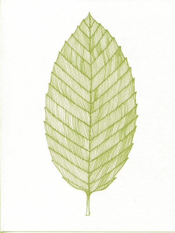 570x755 Beech Leaf Print By Bigbrainart Tattoo Inspiration Tattoos