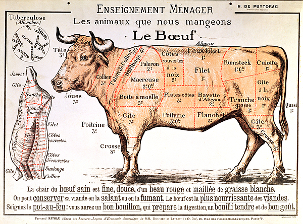 600x445 Beef Drawing By French School
