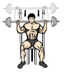 212x238 Drawing Of A Man Seated On A Bench Presses Weight Upwards Behind