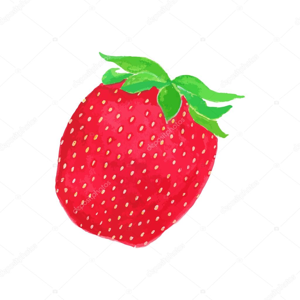 1024x1024 Strawberry. Hand Drawn Berry. Real Watercolor Drawing. Vector
