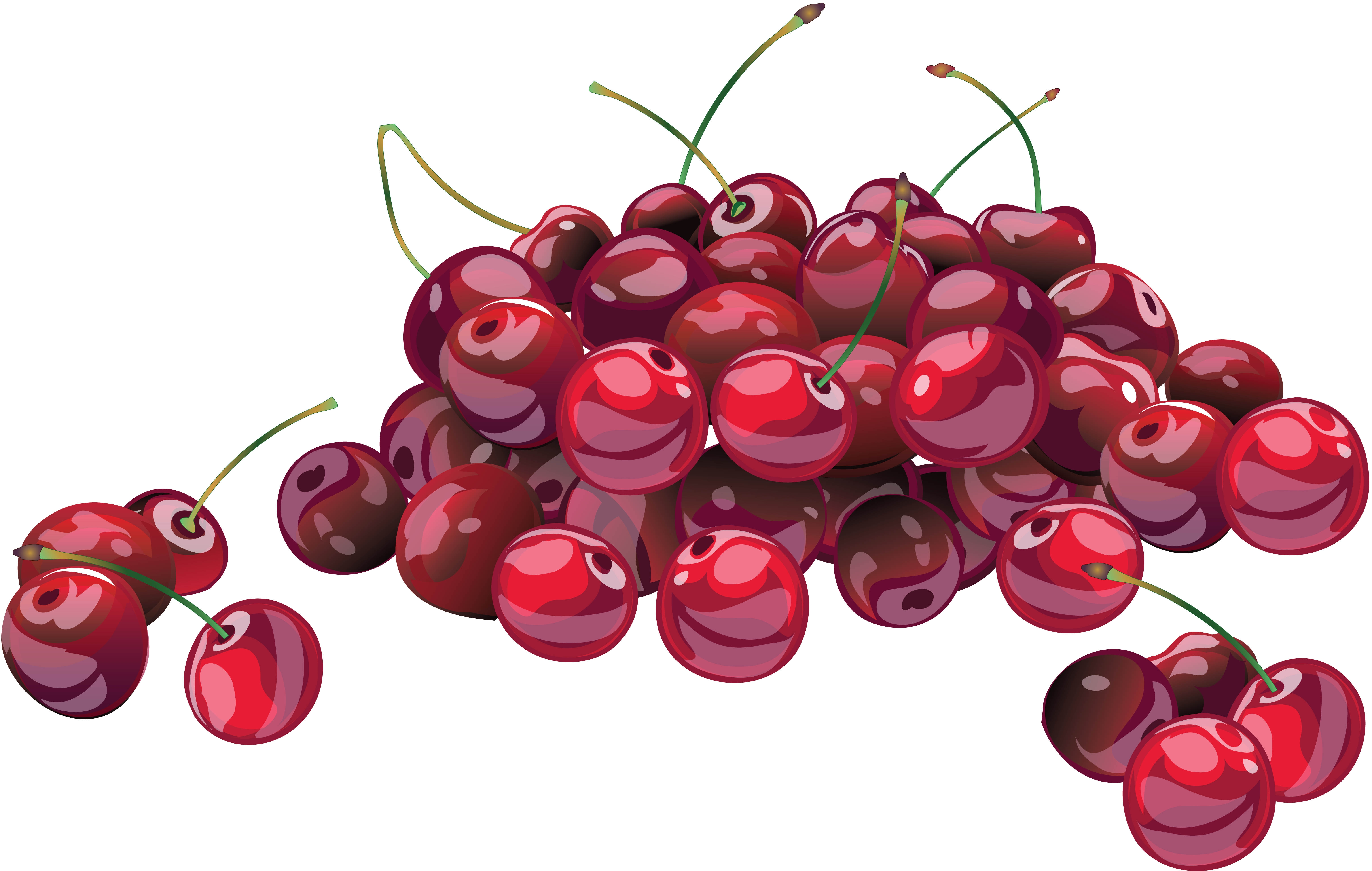 6136x3897 Wallpaper Cherry, Berry, Drawing, Branch, Many Hd, Picture, Image