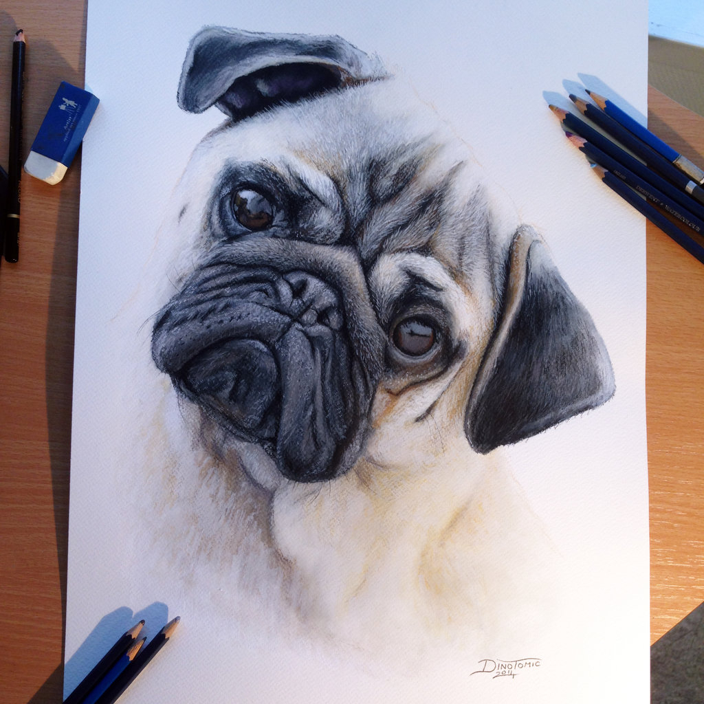 1024x1024 Best Drawings In The World The Best Drawing In The World