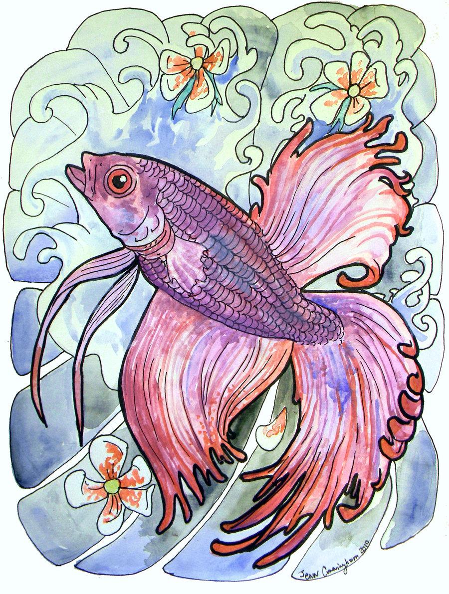 Beta Fish Drawing At Getdrawings Com Free For Personal Use Beta