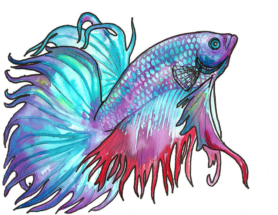 900x696 Betta Fish Painting By Jenn Cunningham