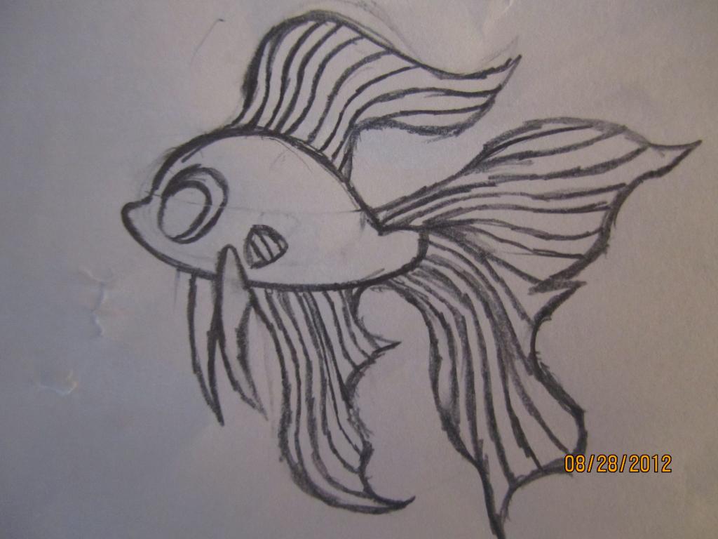 1024x768 Anime Fish Drawings How To Draw A Cartoon Betta Fish Asian