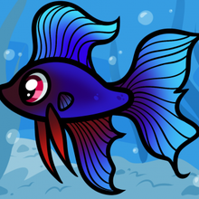 220x220 How To Draw How To Draw A Betta For Kids, Betta Fish