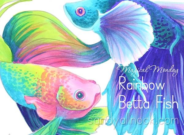 600x440 Magical Monday Rainbow Betta Fish Drawing Sandy Allnock