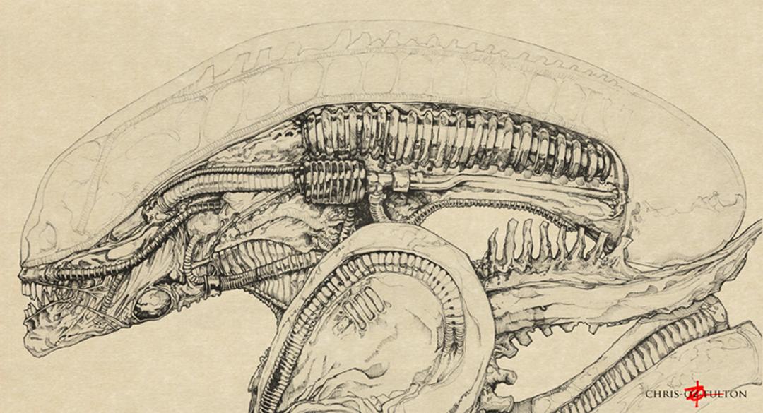 1080x585 Xenomorph Alien Big Chap By Chrisozfulton