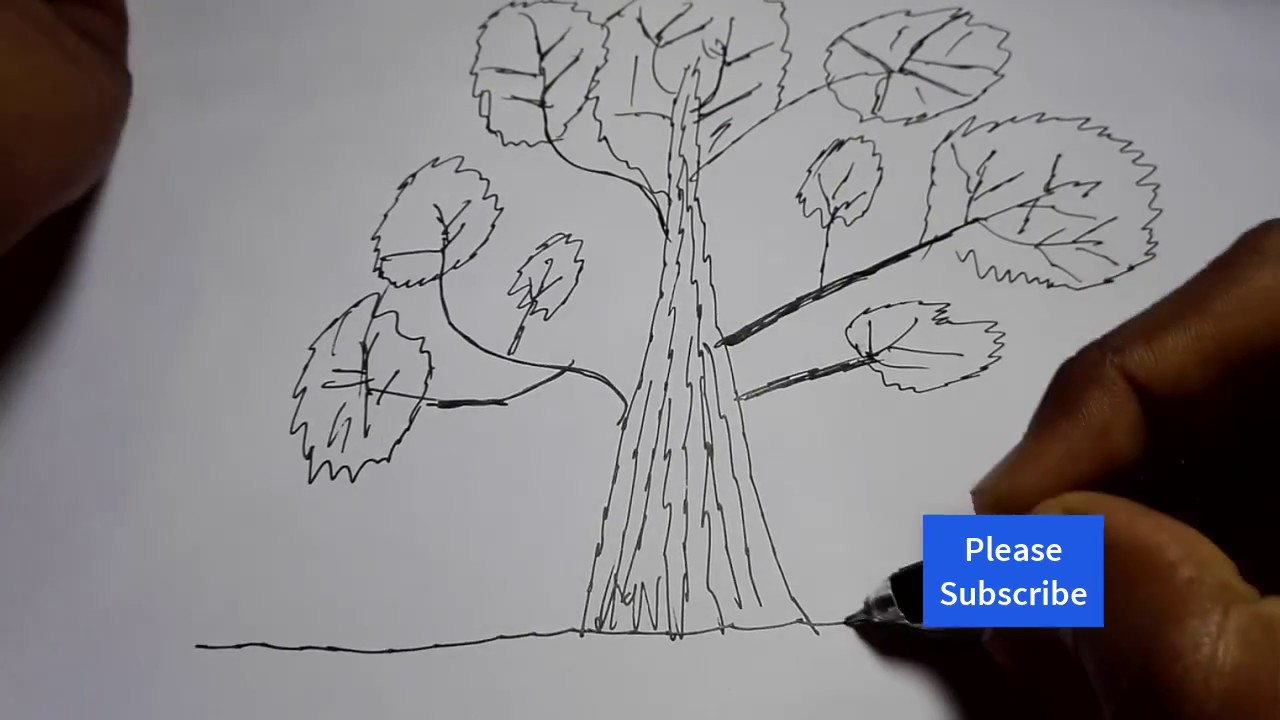 Flower Child Line Drawing : Big tree drawing at getdrawings free for personal use