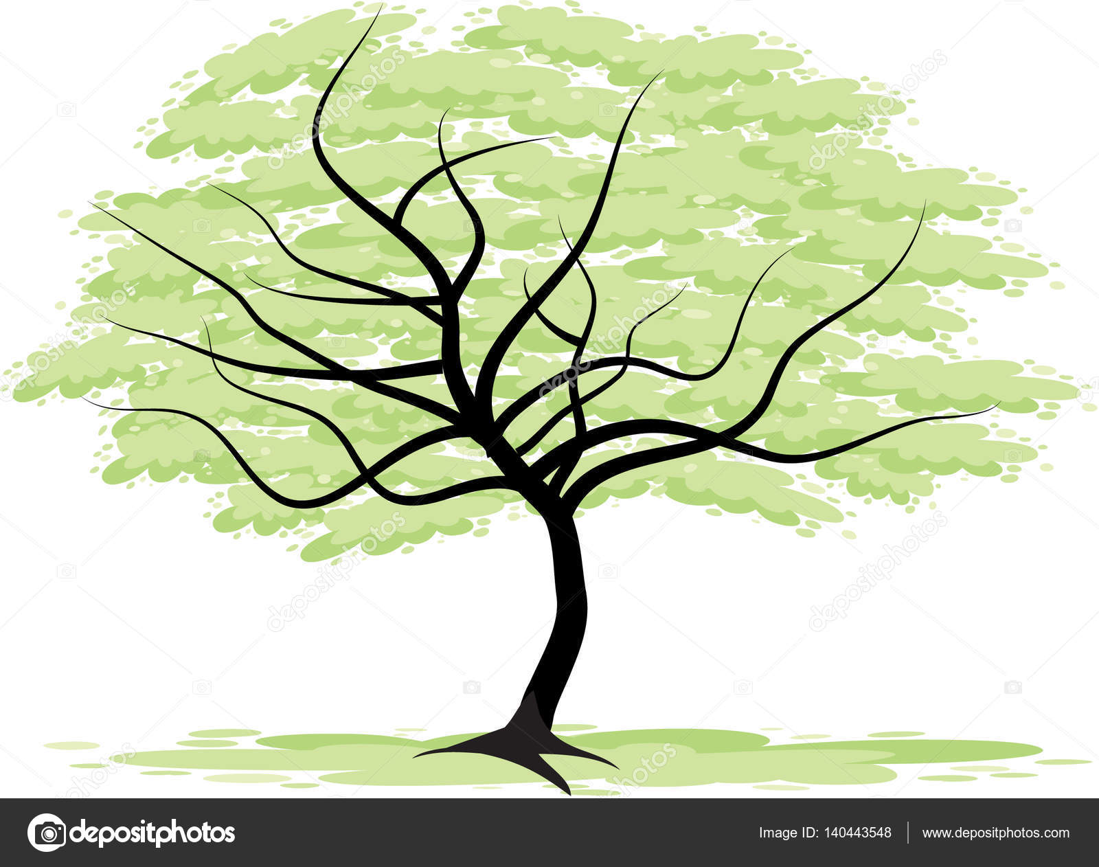 Big Tree Drawing at GetDrawings.com | Free for personal use Big Tree ...