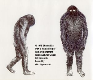 300x260 Image Result For Bigfoot Drawing Collab With Nick