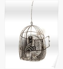 210x230 Birdcage Drawing Posters Redbubble