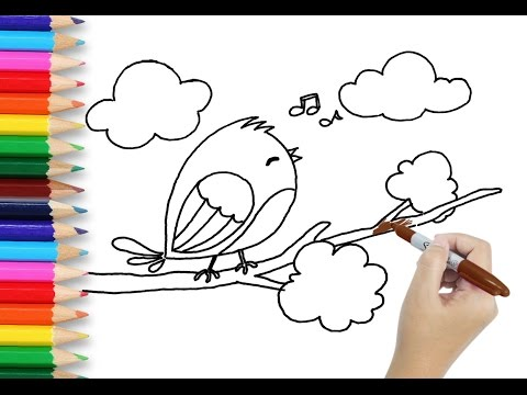 480x360 Art Kids Learn How To Draw Bird Drawing And Coloring