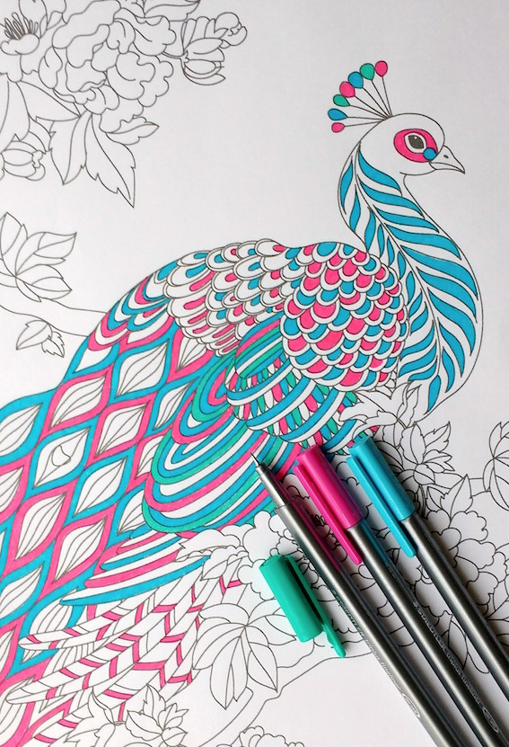 567x831 Step By Step Coloring Peacock Feathers