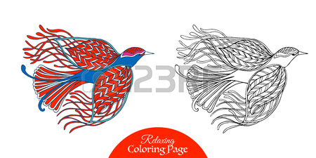 450x225 Tropical Bird. Vector Illustration. Coloring Book For Adult