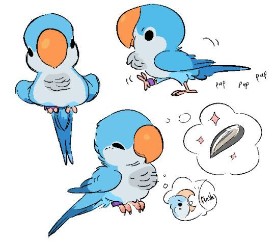 540x473 Animal Character Design, Birds, Quaker Parrot By Zooque Find