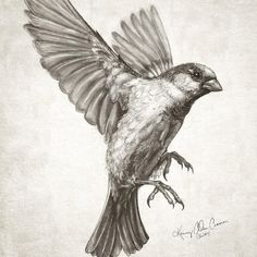 236x236 Ink And Pen Bird. Teagan White Tattoos Bird