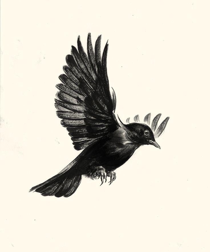 736x882 Tattoo Blackbird Birds Flying Drawing Bird Flying Tattoo Bird
