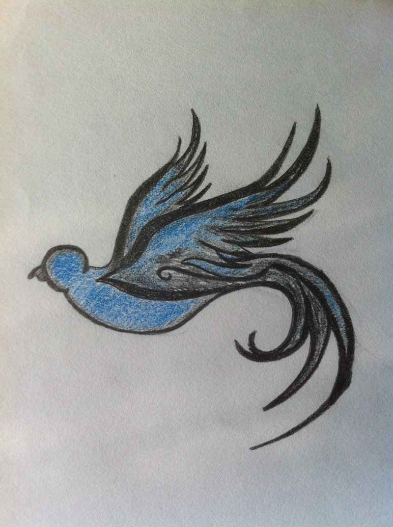 772x1034 Bird Drawing By Rodjij