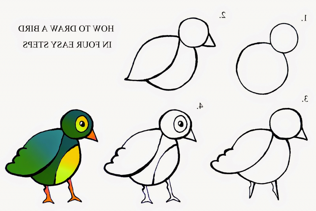 1024x684 gallery bird drawing easy step by step