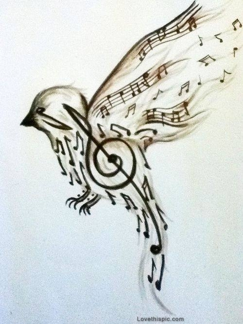 500x667 Song Bird Pictures, Photos, And Images For Facebook, Tumblr