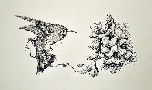 500x295 Pen Drawings Tumblr