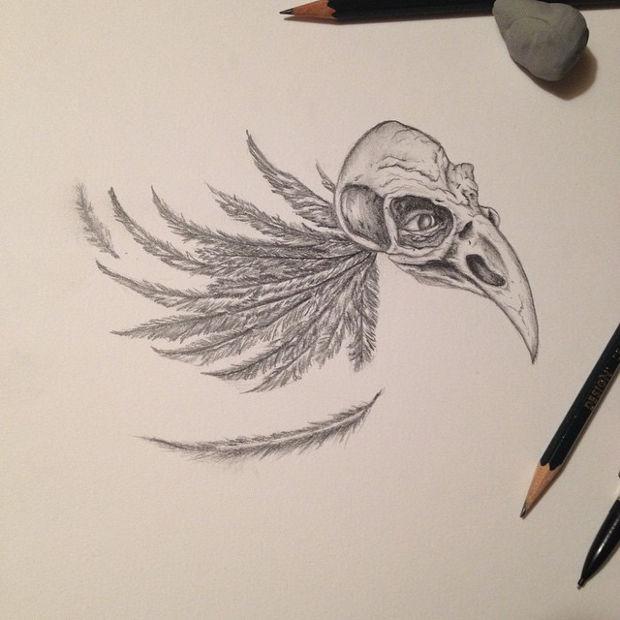 620x620 Bird Drawings, Art Ideas Design Trends