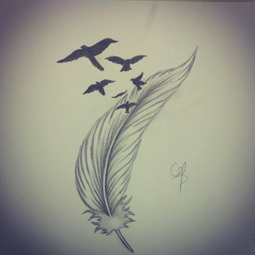 894x894 Draw Feather 4 By Qtattoo