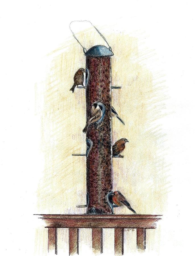 686x900 Bird Feeder 2 Drawing By Lora Mcgowan