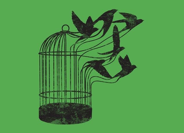 636x460 Cage Birds Fly Mudhut Bird, Tattoo And Piercings