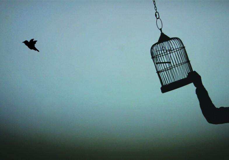 785x549 La Gabbia (The Cage) By Aurorameccanica
