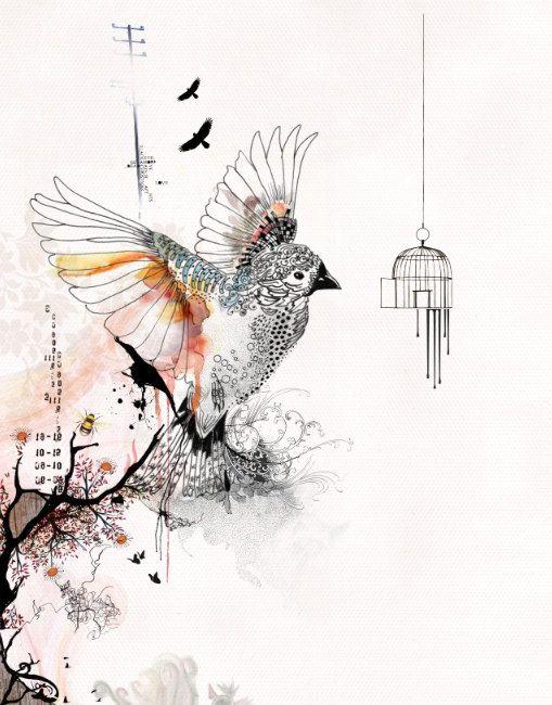 509x650 Prints Illustrations, Bird Cage Art, Living Room Art, Bird Art