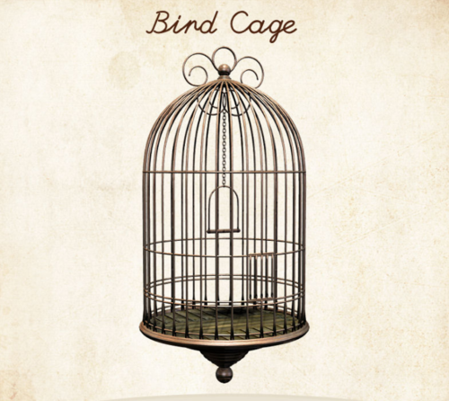 500x446 Bird Cage Drawing Bird Cages Wallpaper Art Vintage Pretty
