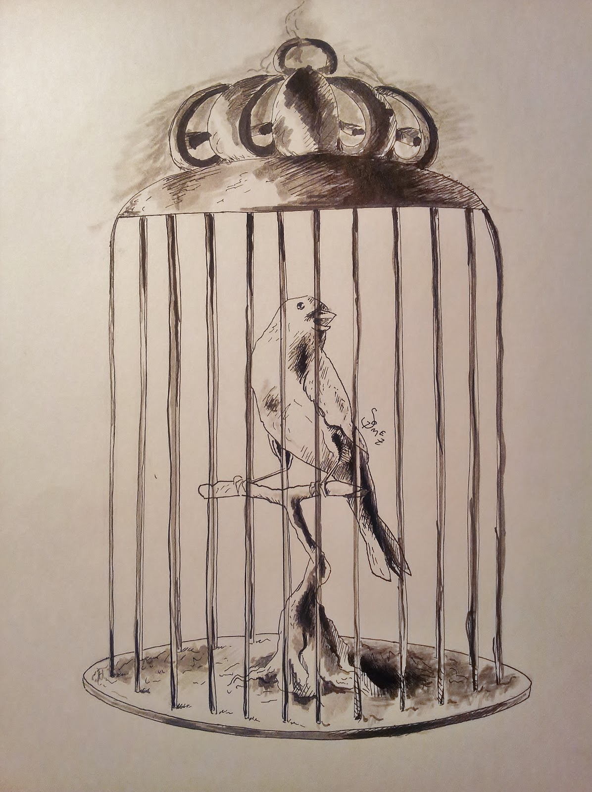 1196x1600 Bird In Cage Drawing