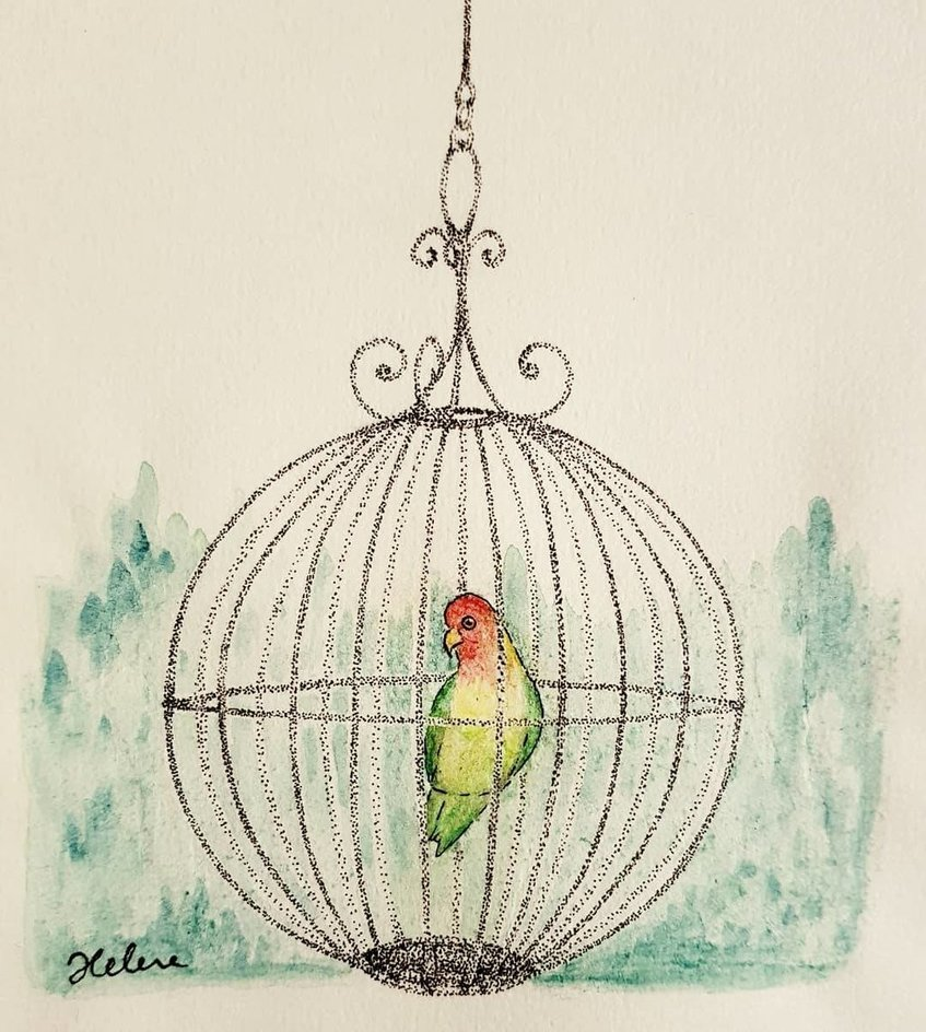 847x944 Bird In A Cage By Saintelmsfire