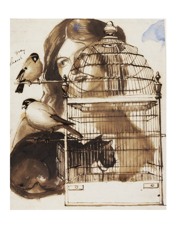 576x768 Woman And Bird Cage Maclise, Daniel Ra Vampa Search The Collections