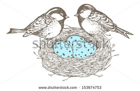 Line Drawing Nest : Bird in a nest drawing at getdrawings free for personal use